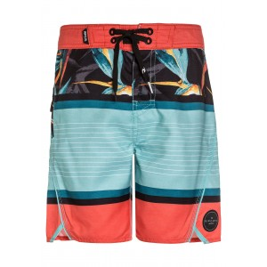 Boardshort RIP CURL Aggrohaven Boardshort 17""